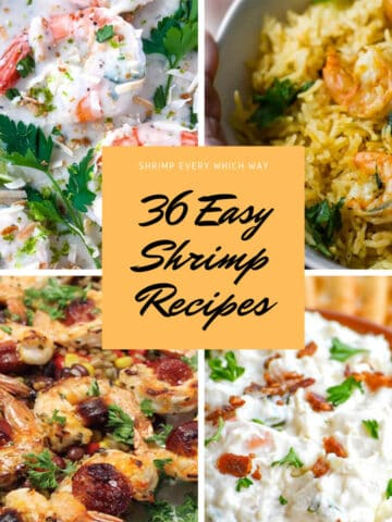 Shrimp every which way recipe roundup