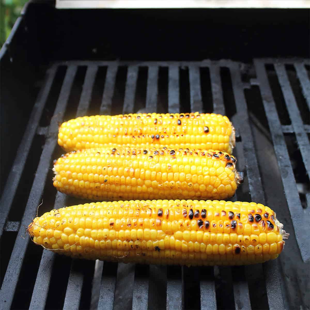 Corn on the cob on grill.