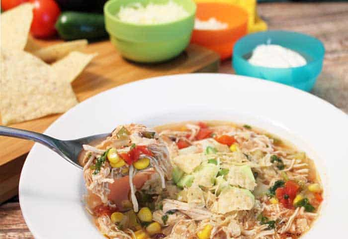 Crockpot Chicken Tortilla Soup spoonful | 2 Cookin Mamas