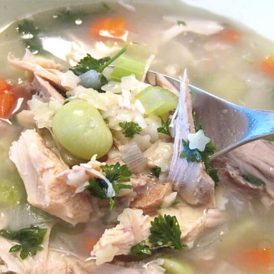 turkey soup closeup with spoon | 2 Cookin Mamas