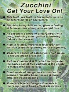 Zucchini Nutritional Facts