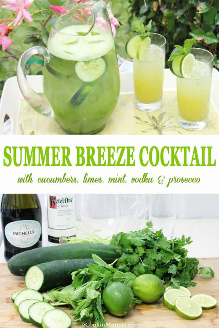Summer Breeze Cocktail | 2 Cookin Mamas Summer Breeze Cocktail is an easy summertime drink that will cool you off on a hot day! A cross between a smoothie and a cocktail, fresh cucumbers combine with limes, cilantro, mint and vodka then topped off with the effervescence of Prosecco to flavor up your day! #cocktail #prosecco #cucumbers #vodka #summer #recipe