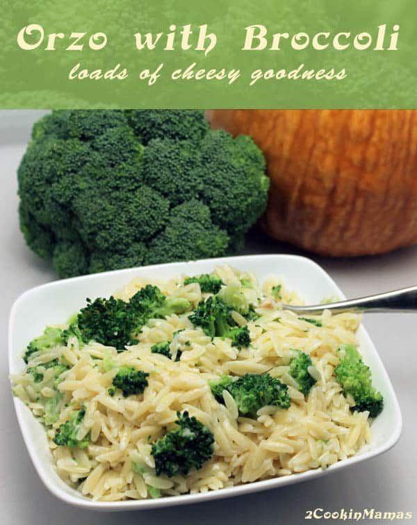 Orzo with Broccoli main | 2CookinMamas