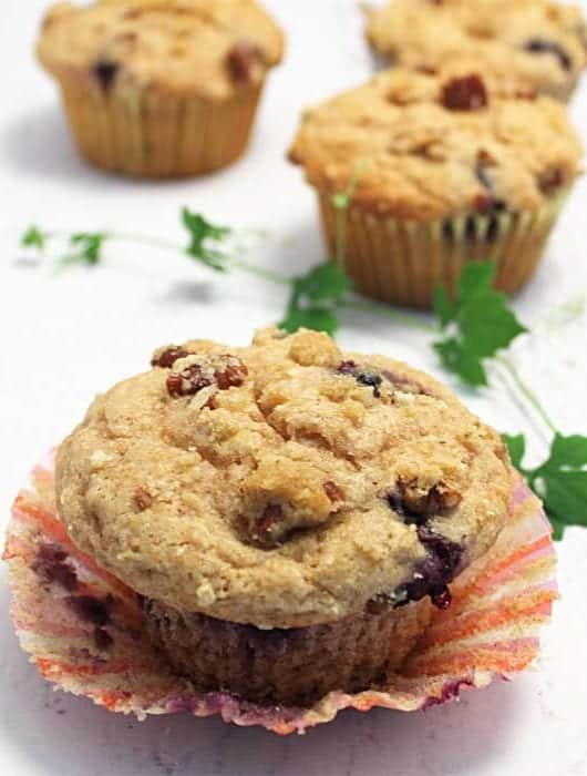 Coffee Cake Blueberry Muffins single square