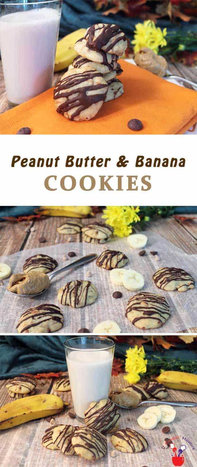 Peanut Butter Banana Cookies main | 2 Cookin Mamas These Peanut Butter and Banana Cookies take the concept of combining peanut butter and banana to a whole new level. Rich banana bread-like cookies are chock full of peanut butter chips then drizzled with dark chocolate - oh mercy, you won't want to stop eating them! #recipe #dessert