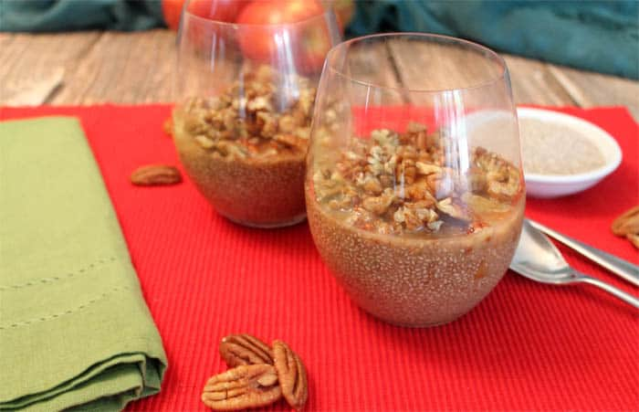 Apple Pecan Chia Pudding 4 | 2 Cookin Mamas