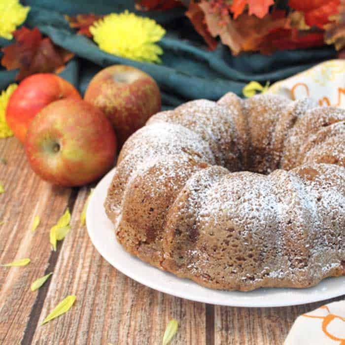 One Bowl Apple Cake square | 2 Cookin Mamas