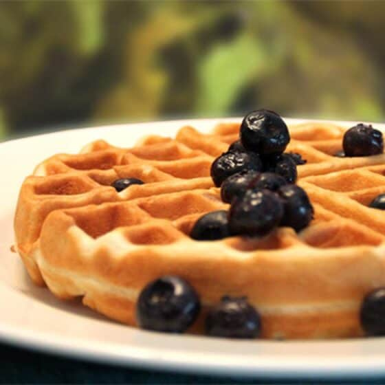 Almond Flour Waffles square | 2 Cookin Mamas