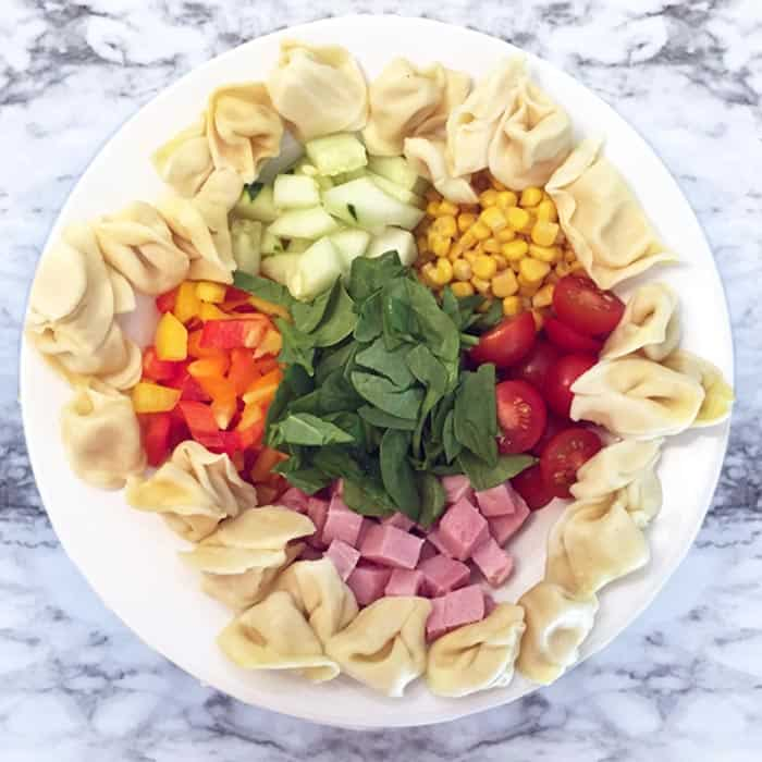 Garden Tortellini Salad with ham square | 2 Cookin Mamas