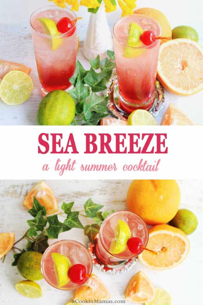 Sea Breeze Cocktail main | 2 Cookin Mamas A lighter version of a Sea Breeze Cocktail that's delightfully fresh & bubbly. Cranberry juice, vodka & sparkling grapefruit water. #cocktail #recipe #vodka #cranberryjuice #sparklingwater #summercocktail #drink