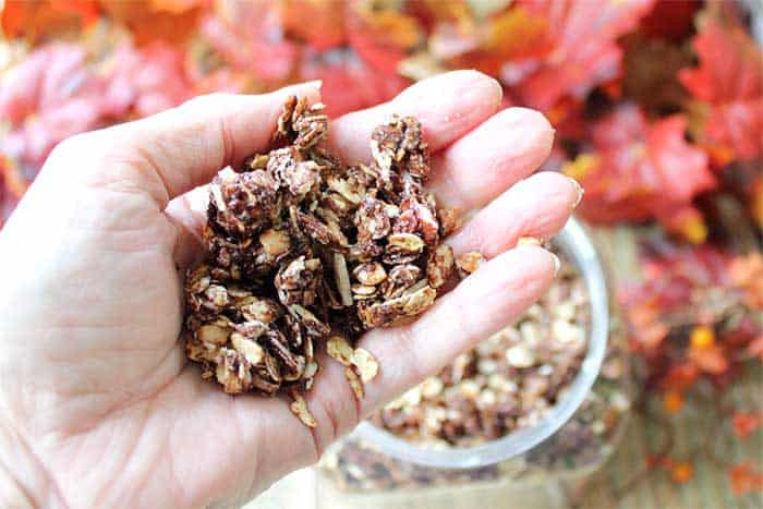 Chocolate Granola handful | 2 Cookin Mamas