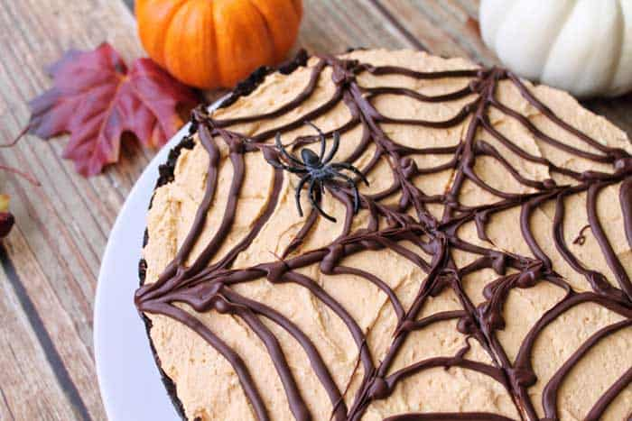 No Bake Pumpkin Cheesecake closeup of web   2 Cookin Mamas