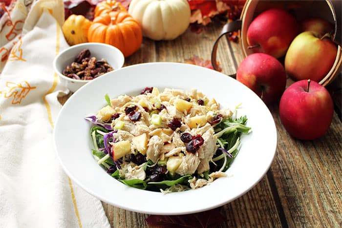 Harvest Chicken Salad in white bowl with apples and gourds in background.