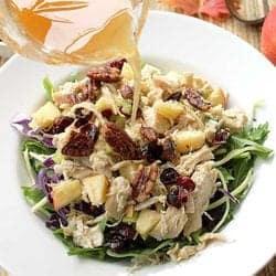Harvest Chicken Salad square   2 Cookin Mamas