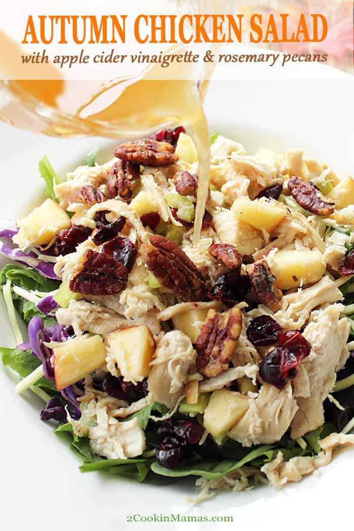 This Harvest Chicken Salad just screams fall! Warm chicken breasts, poached in fresh apple cider, combine with apples, cranberries and fresh greens for a seasonal explosion of flavor. Top with fragrant, easy to make, rosemary pecans and toss with a light apple cider vinaigrette. The perfect lunch or dinner side for cool fall days. #salad #fall #lunch #recipe #applecider #chicken #apples #healthy #rosemary #pecans #cranberries