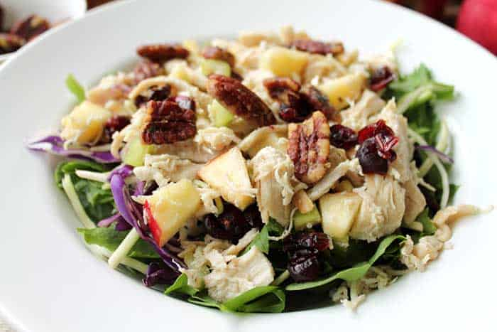 Harvest Chicken Salad closeup | 2 Cookin Mamas