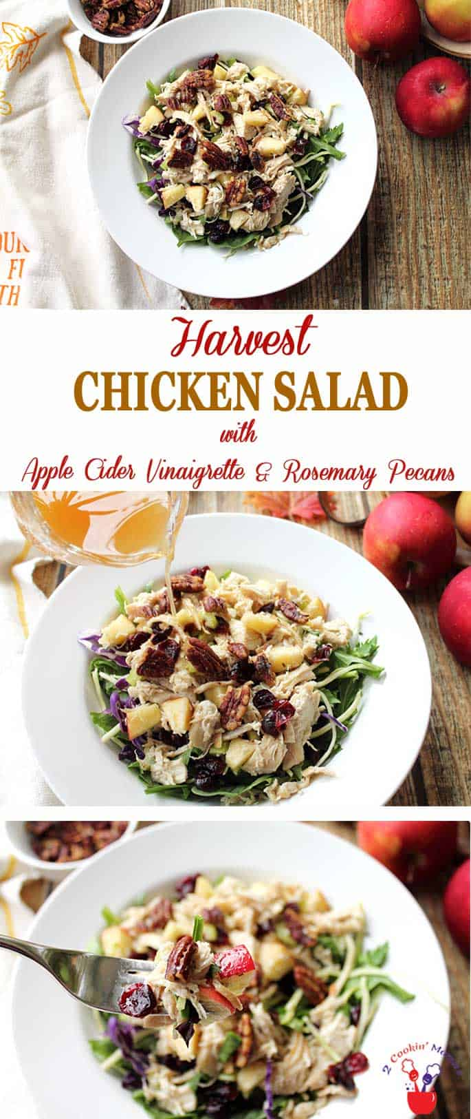 Harvest Chicken Salad | 2 Cookin Mamas Harvest Chicken Salad screams fall! Chicken cooked in apple cider, tossed with apples, cranberries & pecans then drizzled with apple cider vinaigrette. #fallsalad #salad #lunch #chicken #rosemarypecans