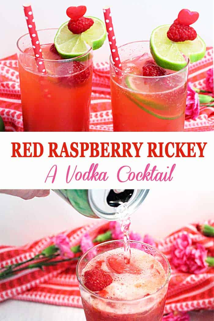 Red Raspberry Rickey Cocktail | 2 Cookin Mamas This Red Raspberry Rickey Cocktail is both fruity and fresh. Full of effervescence, it's a light vodka cocktail with the sweet taste of raspberries. It's perfect for Valentine's Day, an anniversary or a poolside summer cooler. #cocktail #raspberries #vodka #ValentinesDay #summercocktail
