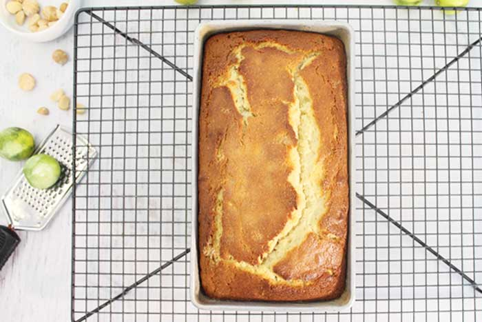 Key Lime White Chocolate Macadamia Bread hot out of the oven