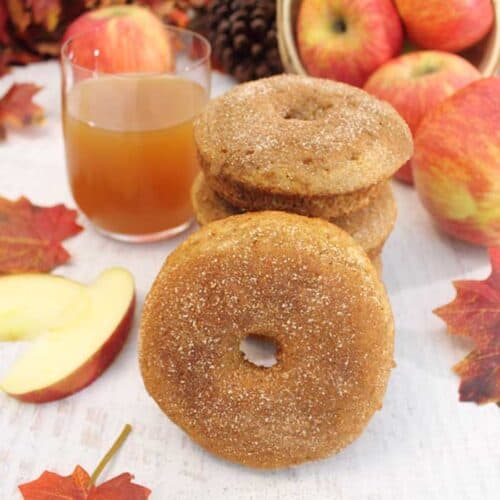 Apple Cider Doughnuts square