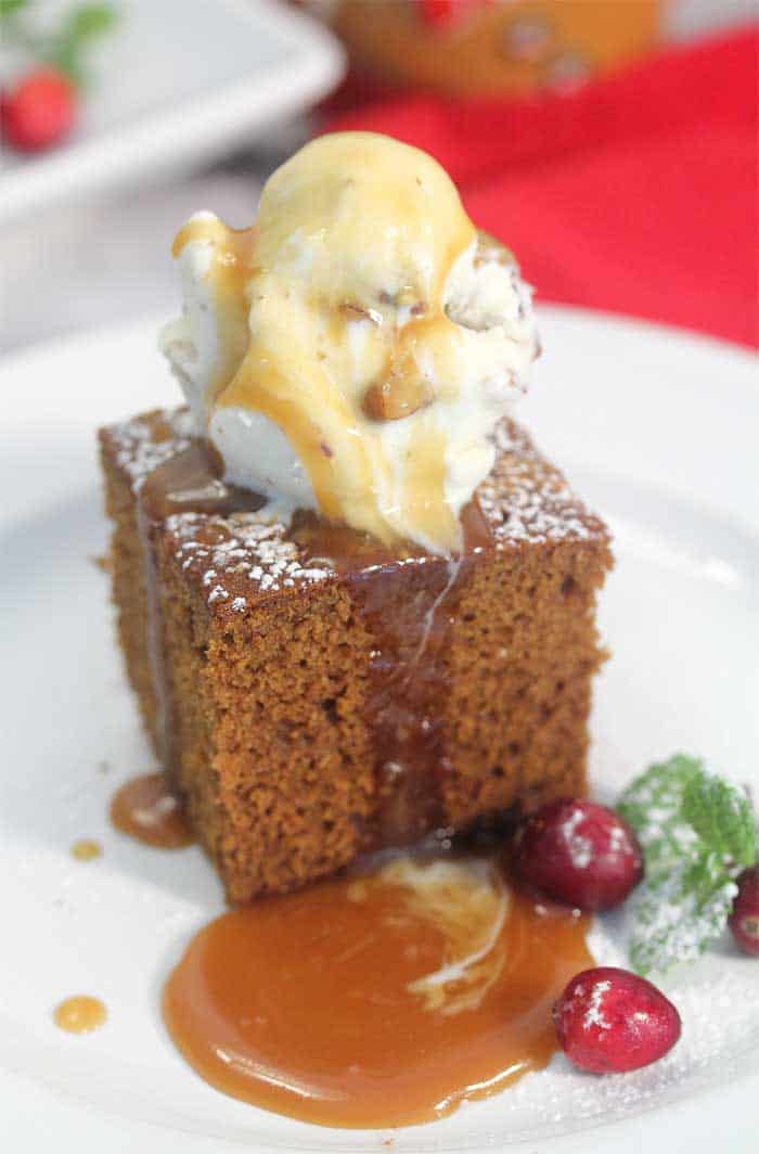 Homemade Spicy Gingerbread single with ice cream closeup