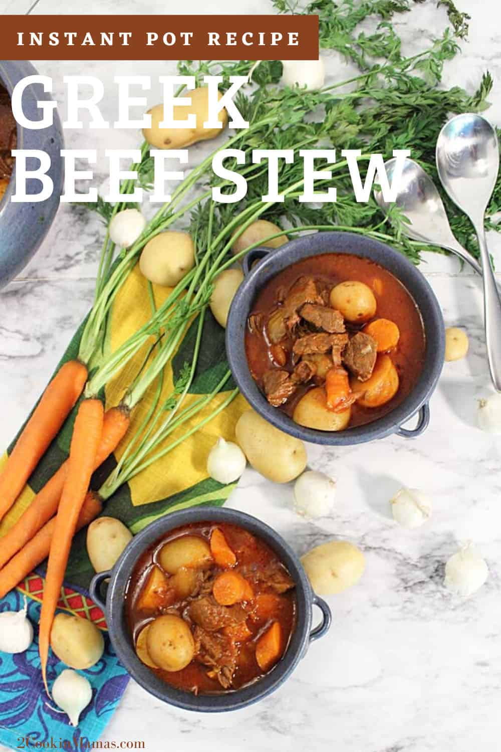 Instant Pot Greek Beef Stew