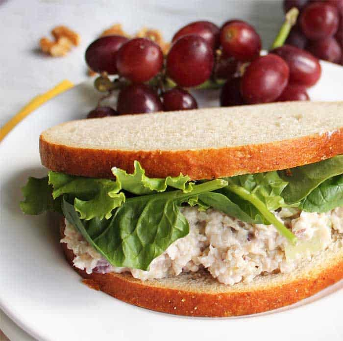Closeup of chicken salad sandwich on white plate.