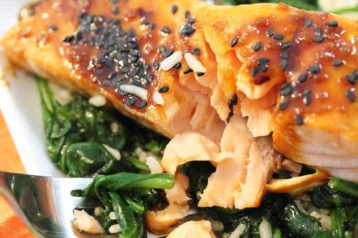 closeup of flaky baked salmon.