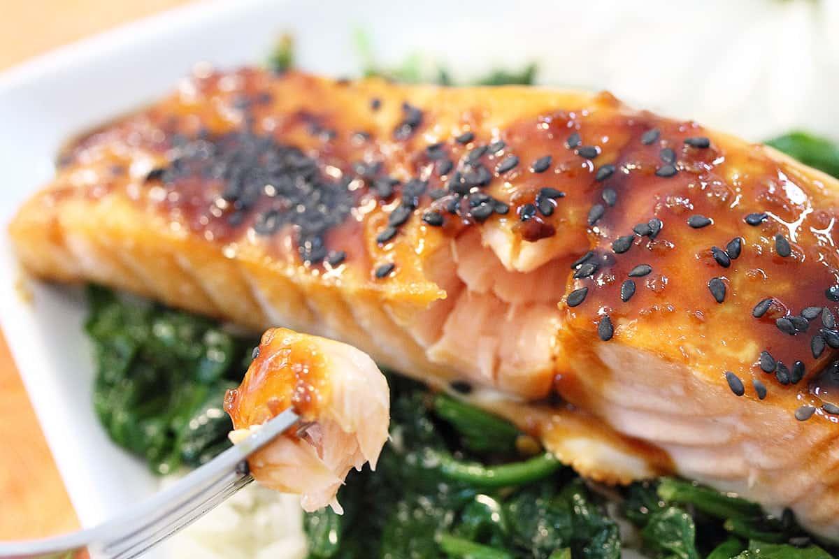 Bite of plated maple glazed salmon.