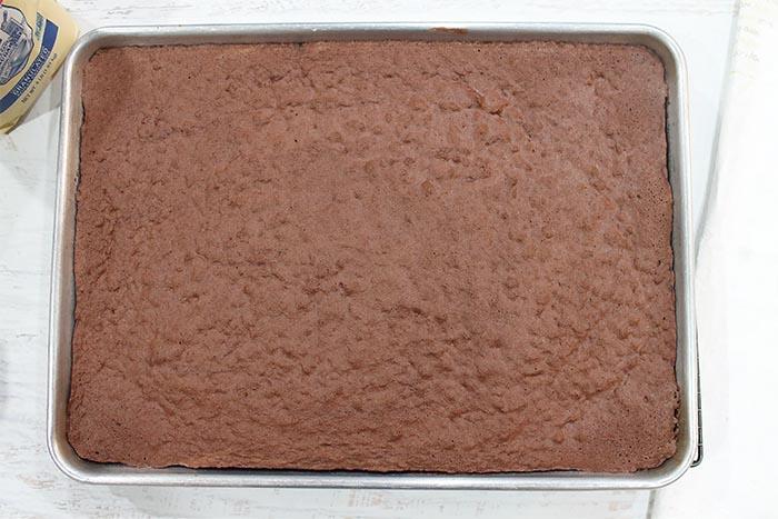 Baked Swiss Cake Roll overhead.