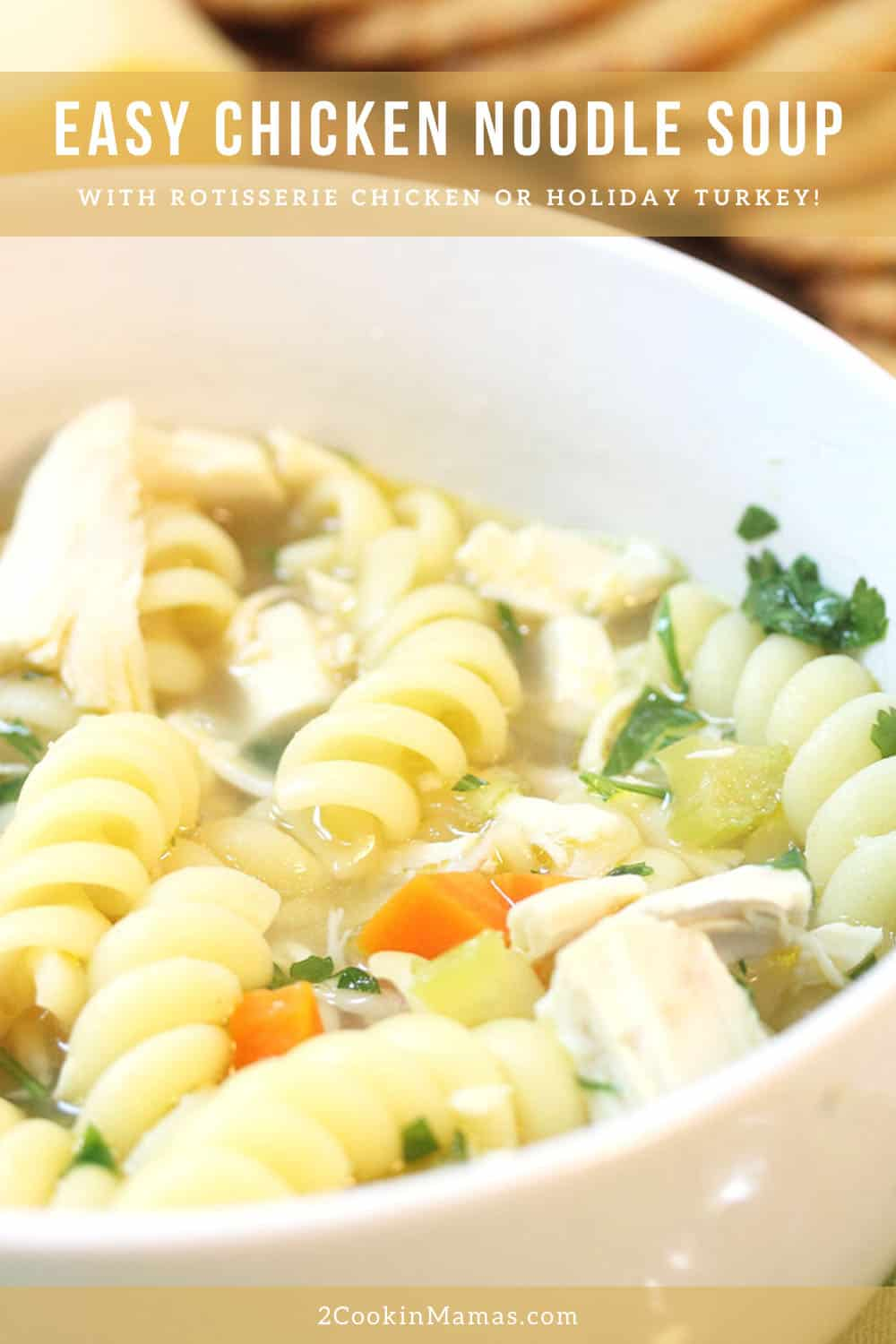 Easy 30 Minute Chicken Noodle Soup