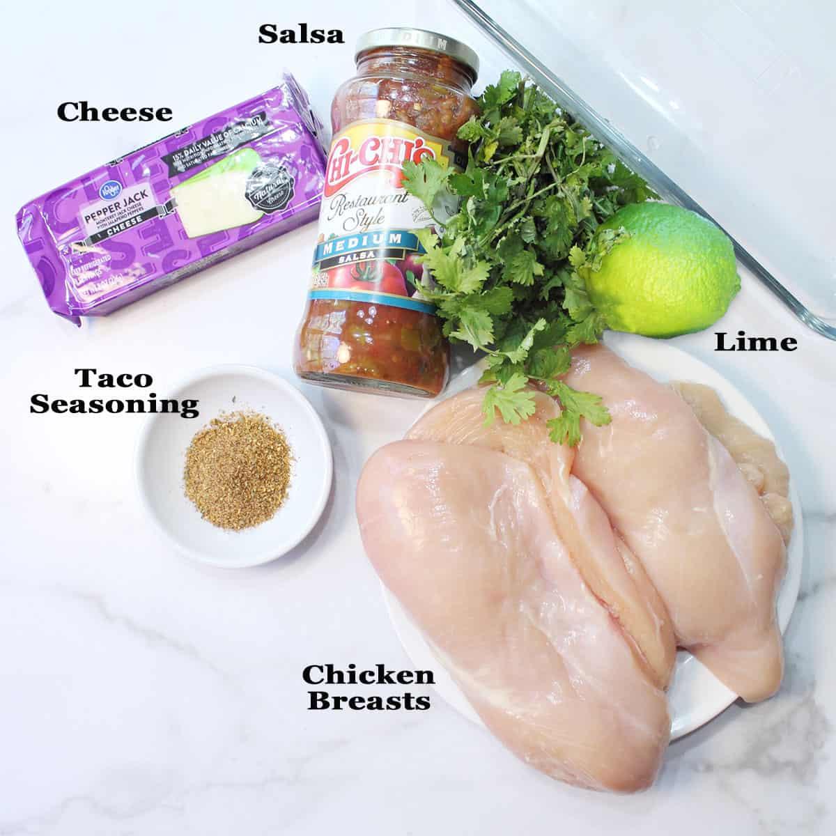 Ingredients for Chicken Salsa recipe.